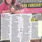 cat burglar swallows diamond necklace